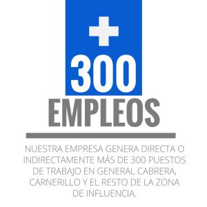300 empleos